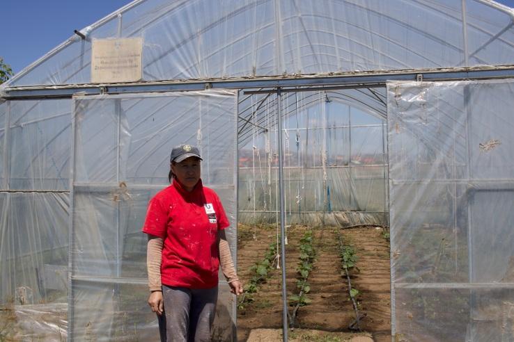 The Greenhouse Caretaker