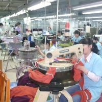 Will 'Made in Mongolia' Take Off Globally? The Cashmere Story